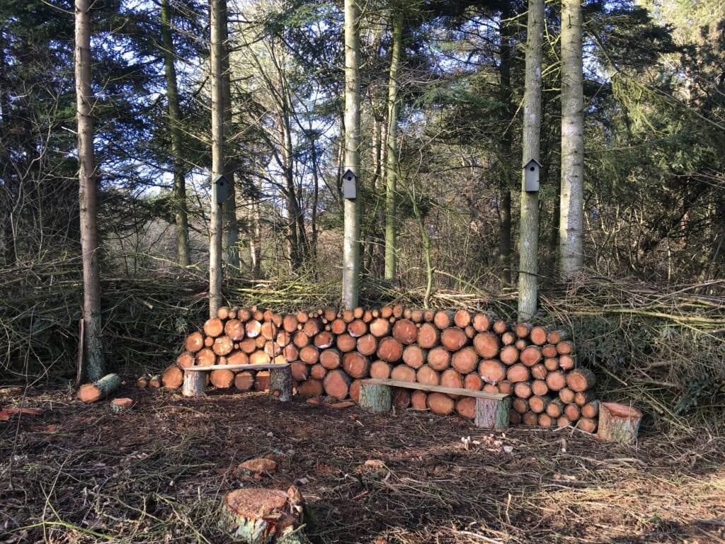 Den vildehave med brændestak