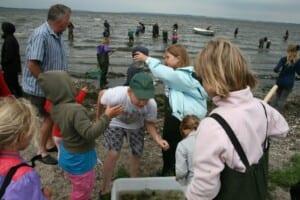 Fiskeri ved Stistrup
