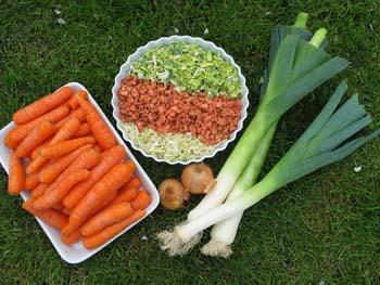 Tørrede grønsager