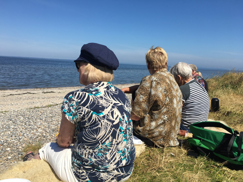 Damer kigger ud over Limfjorden