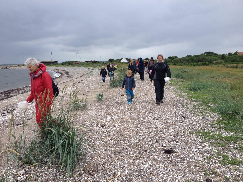 Folk går tur og samler sten på stranden