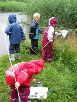 Børn fisker med net