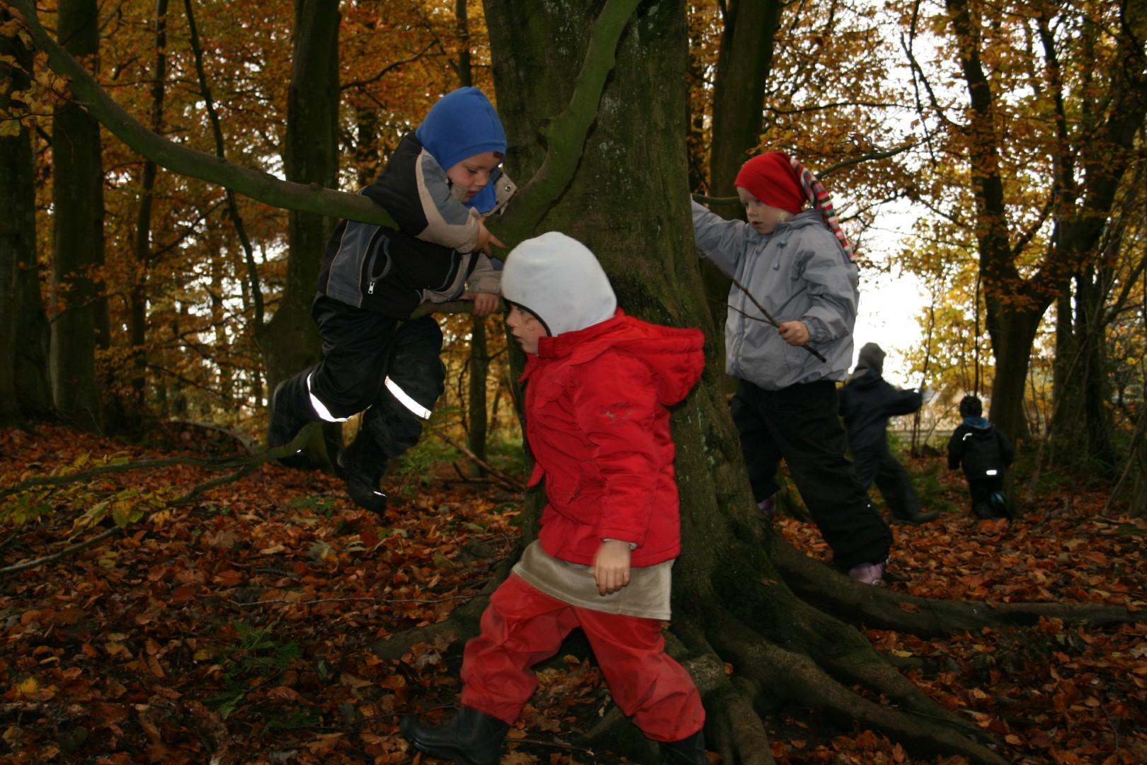 Børn som leger i bladende i skoven