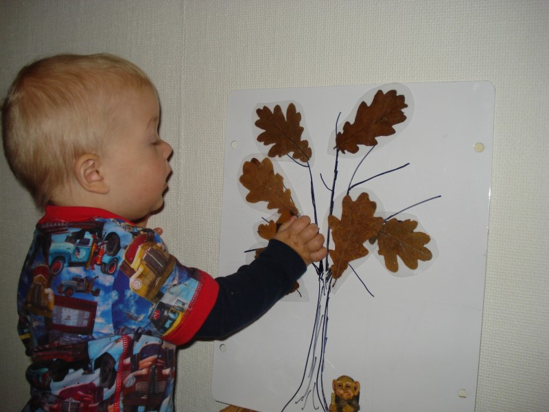 Billede af en lille dreng som ser på en tegning, hvor der er tegnet et træ og på grenene er der limet brune blade på