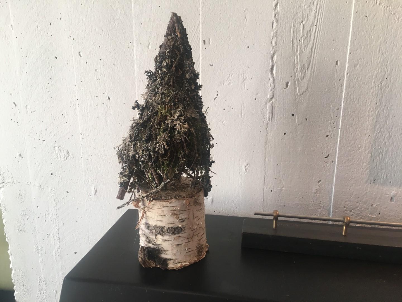 Mosjuletræ på birkefod