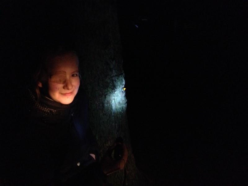 Billede af en pige i skoven i mørke