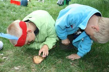 2 drenge kikker på myre dans