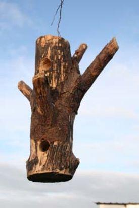 Foderbræt lavet af en træstamme med grene
