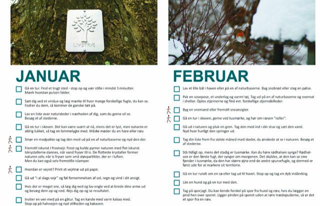 Billede af Naturglædekalender for januar og februar