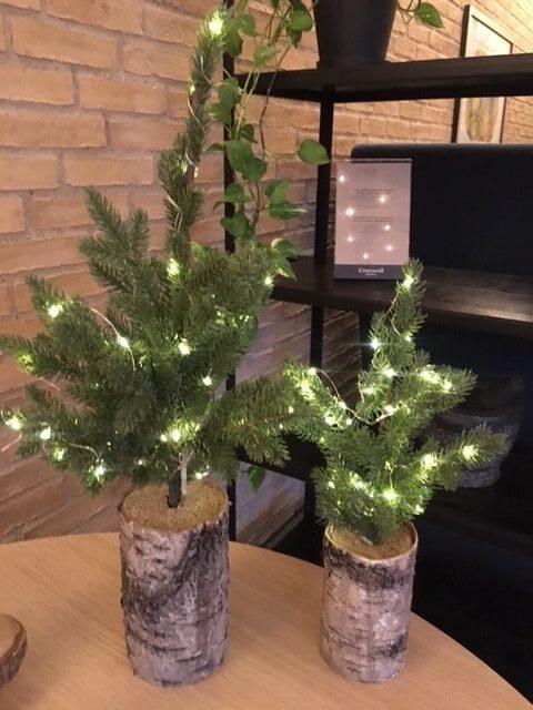 små juletræer med lys