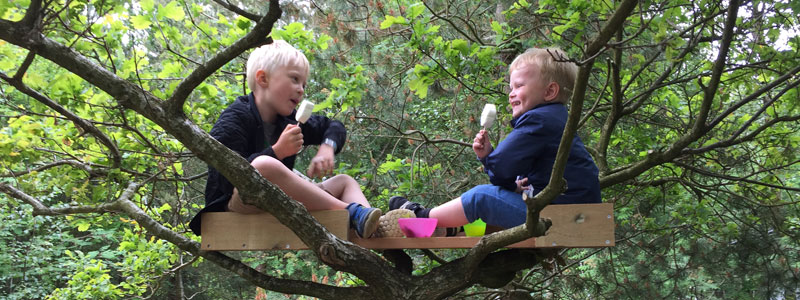 To drenge som spiser is i deres træhule