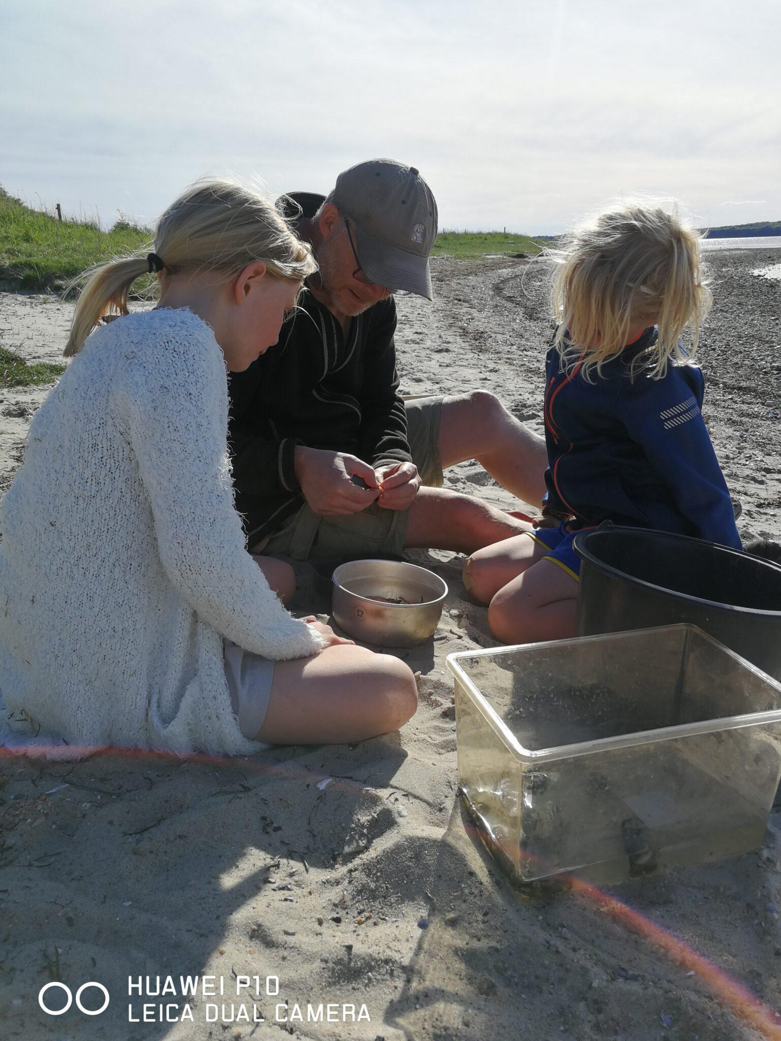 Hygge på stranden, hvor der laves mad med Primi Deluxe