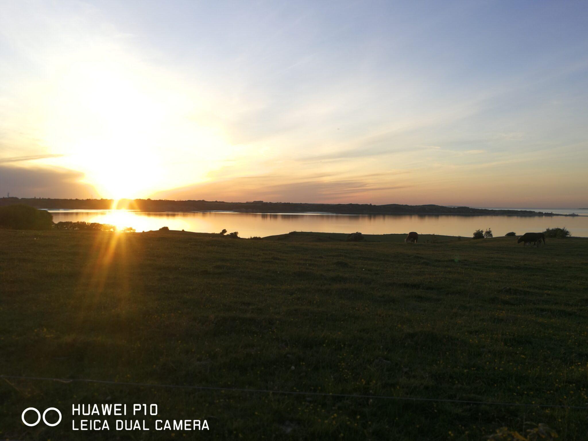 Solnedgang over limfjorden