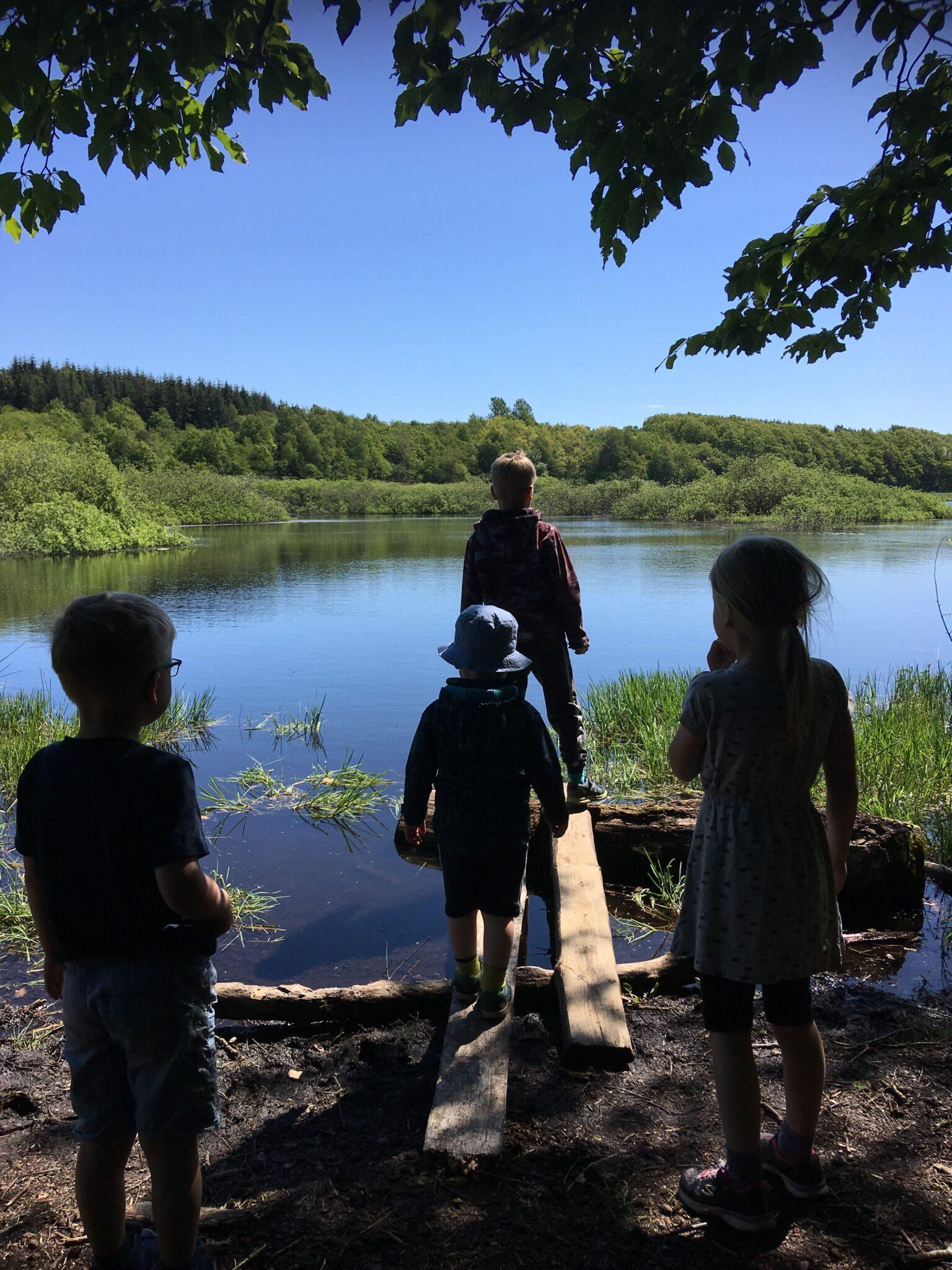 Børn ved søbred med improviseret bro