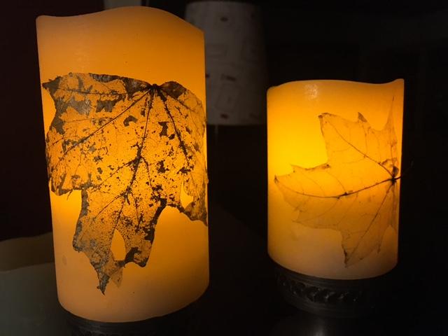 LEDlys med bladskelet fra spidsløn