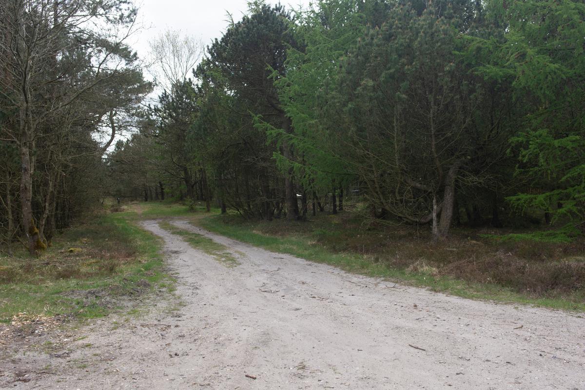Vejen ind til shelterspladsen, Vadgårdsvej 28, 9640 Farsø